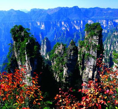 张家界国家森林公园国际旅行社