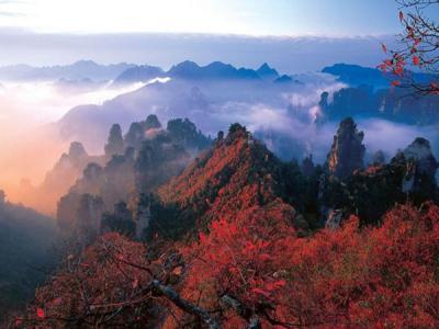张家界秋季旅游的最黄金季节!