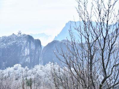 张家界天门山迎今冬首场雾凇美轮美奂