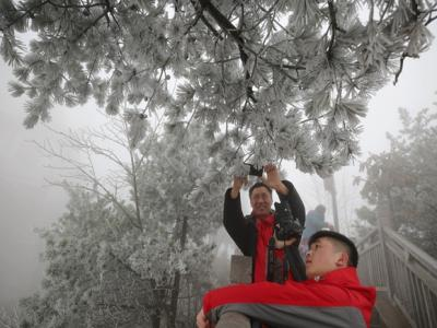张家界天子山 冰挂雾凇引游人
