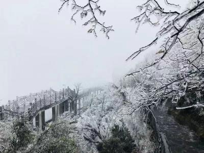 张家界天门山零下2度现雾凇景观 部分景点关闭游道除冰