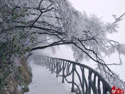 大雪节气 张家界天门山迎今冬首场雪