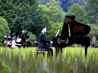 张家界黄龙音乐季钢琴艺术周业余组采取分赛区选拔制