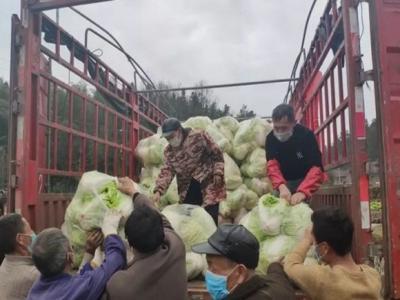 张家界35吨蔬菜已在去往武汉的路上