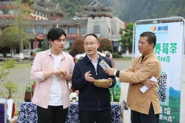朱法栋区长向网友推介特色农产品―张家界莓茶