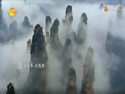 湖南卫视纪录片聚焦张家界美景美食美宿