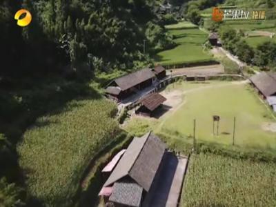 张家界《歌起牧笛溪》带您走玩美丽乡村